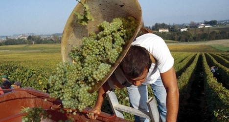 Wine tippling continues to trend downward