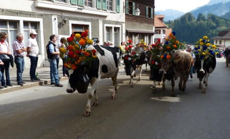 In pictures: village fetes cows' descent from Swiss Alps