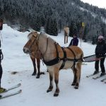 8. Take a horse for a walk —  Originally a Scandinavian activity, ski-jöring has become popular in the Alps. It's open to anyone, though a sense of balance and some ability on skis (cross-country, at least) will help you stay upright when being pulled along on skis by a galloping horse. Try it for yourself at Nax in the canton of Valais, which offers initiation lessons. www.mont-noble-tourisme.chPhoto: Caroline Bishop/The Local