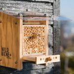 Zurich startup sells homes for raising bees