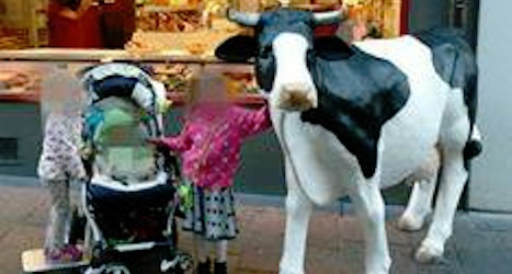 Butcher gains Facebook support for plastic cow
