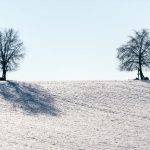 'Winter in April': Temperatures set to drop as cold front sweeps across Switzerland
