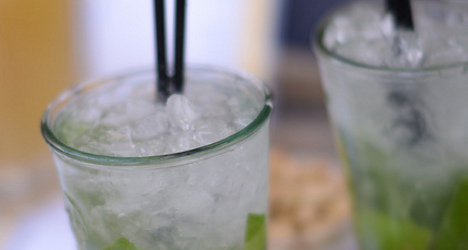 Swiss study finds E. coli bacteria in ice cubes