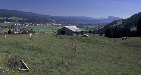 Farms in Swiss Jura to pilot refugee integration project