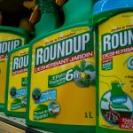 Swiss refuse to ban controversial weedkiller