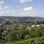 Schoolkids uncover human skeleton in Winterthur woods