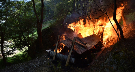 Wasps cause Swiss man to accidentally burn down barn