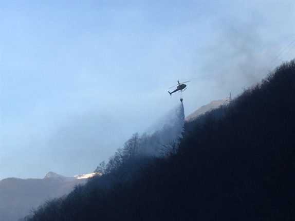 Swiss army helps win battle against forest fires