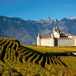 19 mildly interesting facts about Swiss wine