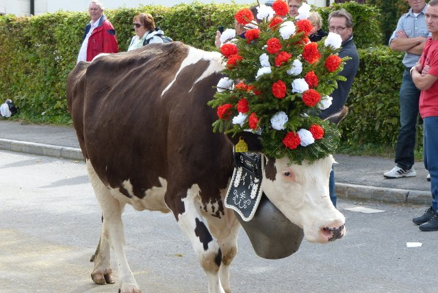Ten brilliant Swiss traditions to experience this autumn