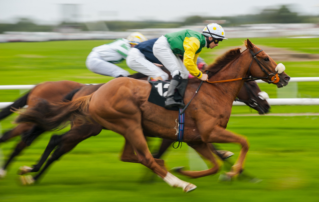 Valais man wins over a million francs on the horses… with a 2.50 franc bet