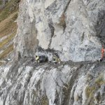 Workers missing after rockfall in Uri found dead
