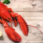 Swiss cooks ordered to stun lobsters before boiling