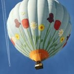 Balloon pilot fined 'for scaring birds' in nature reserve