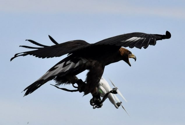 Don't stress the wildlife, Swiss drone pilots warned