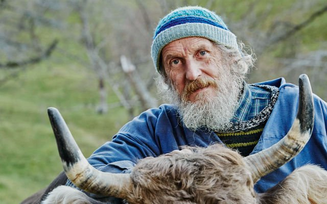 Swiss farmer launches campaign for government to protect animal horns