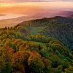 Stranded US teens rescued from Zurich's Uetliberg mountain