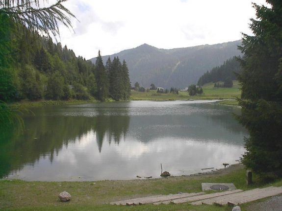 Swiss army accidentally pollutes protected lake with litres of oil