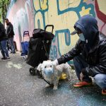 Swiss animal authority warns against putting masks on pets