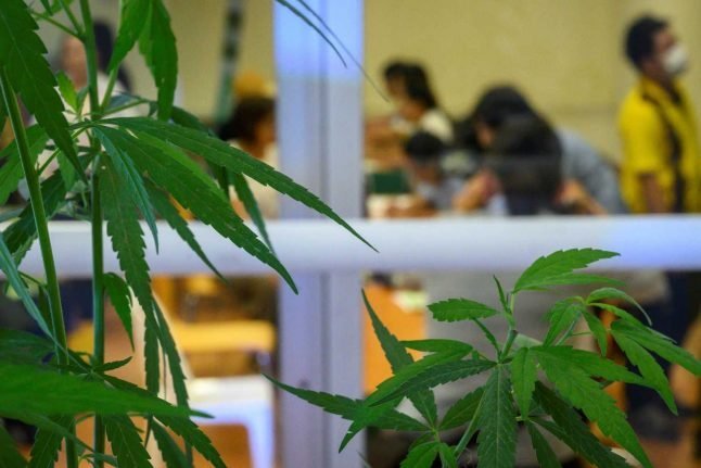 Switzerland backs recreational cannabis trials - with one condition