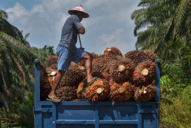 What you need to know about Switzerland's 'palm oil' referendum